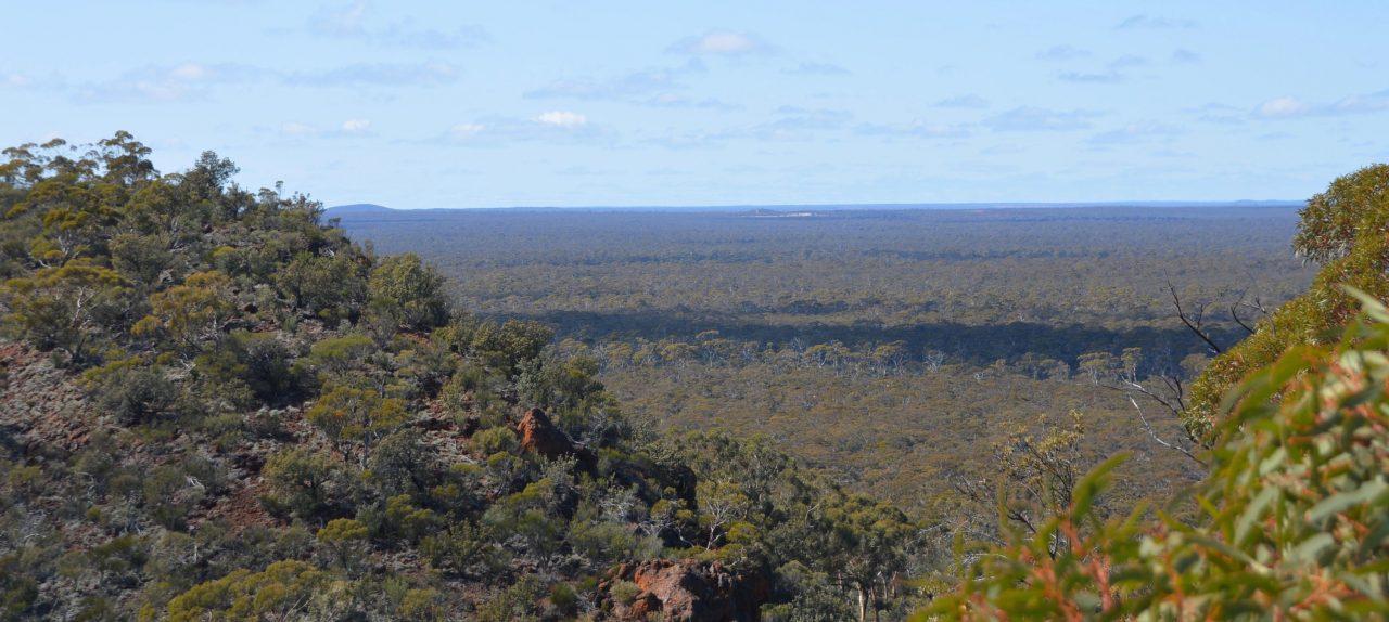 Helena Aurora Ranges and Aboriginal Tour with the Njaki Njaki Family